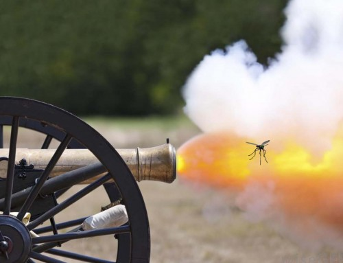 Don´t use a cannon to kill a mosquito