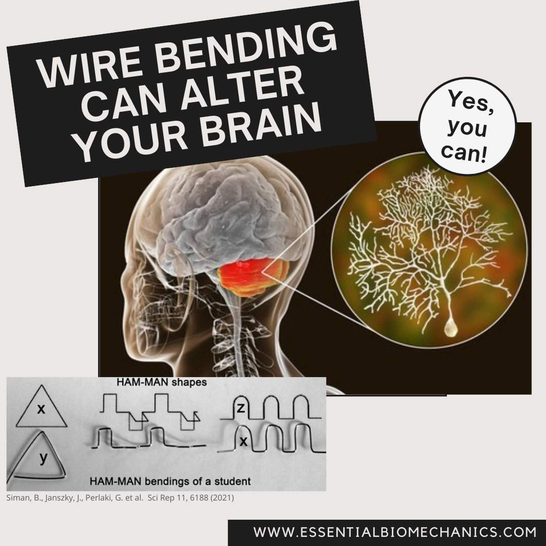 Wire bending can alter your brain